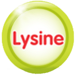 lysine trong yến sào one nest