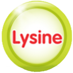 lysine trong yến sào one nest